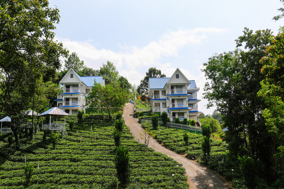 Premium Hotels and Resorts in Munnar