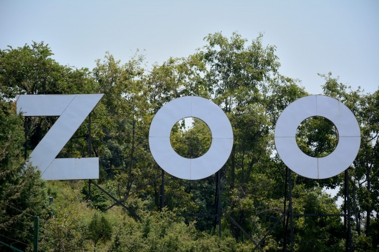 The Nainital Zoo Exploration