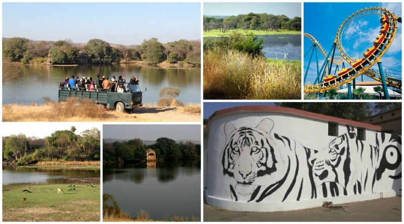 Tourist Attractions in Ranthambore