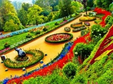 Botanical Gardens (Ooty )