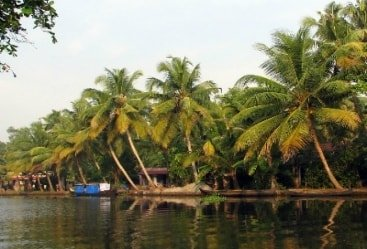 10 Nights 11 Days Mumbai Kerala Backwaters Tours