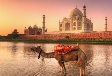 Taj Mahal Tour With Udaipur